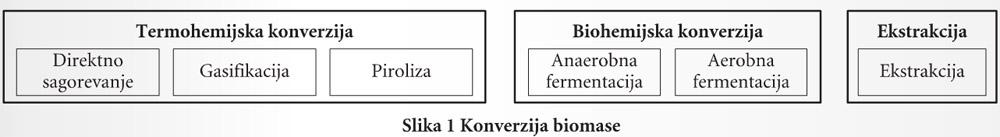 216-slika1-Konverzija-biomase