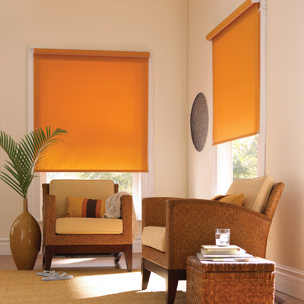 Umesto klasičnih zavesa opredelite za neki od dezena iz najnovije kolekcije rolo panel i zebra zavesa