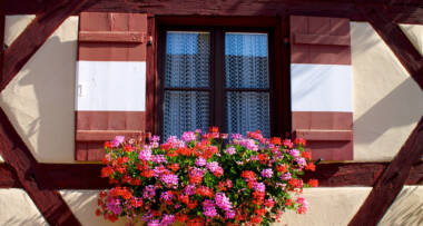 Prozori za Frajlice