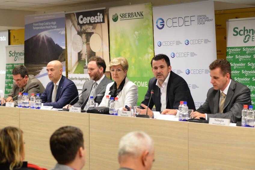 Biomasa - budućnost daljinskog grejanja u Srbiji