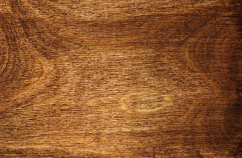 Izgled tvrdog drveta - lišćara