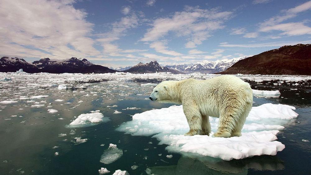 Pazljivo-se-prate-svi-klimatski-parametri-kako-bi-se-otkrilo-kojom-brzinom-se-promene-odvijaju