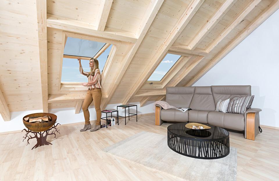Roto Designo krovni prozori za izuzetne kuće