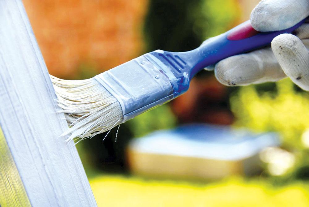 Pre samog farbanja drveta potrebno ga je zaštiti od gljivica, insekata, bakterija, bubica i sl