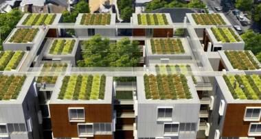 Zeleni krovovi - Pariz