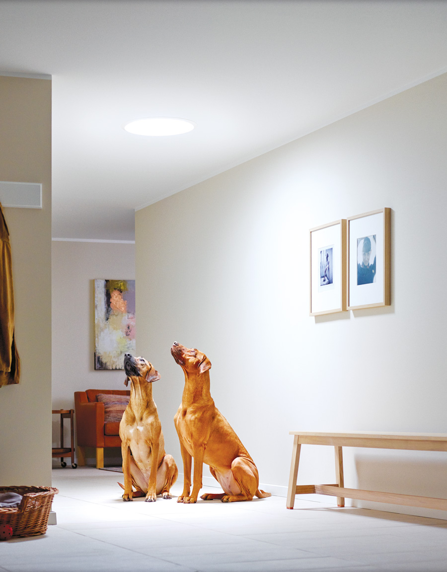 Svetlosna cev ili svetlosni tunel - Foto: Velux