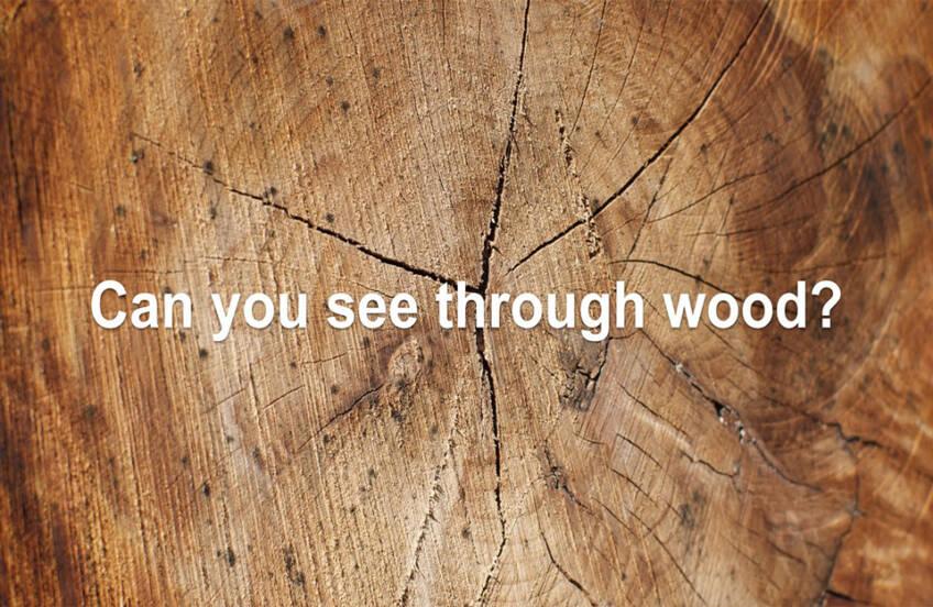 Da li se može videti kroz drvo?