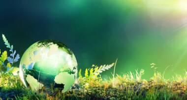 Dan planete zemlje obeležava se u više od 150 zemalja sveta