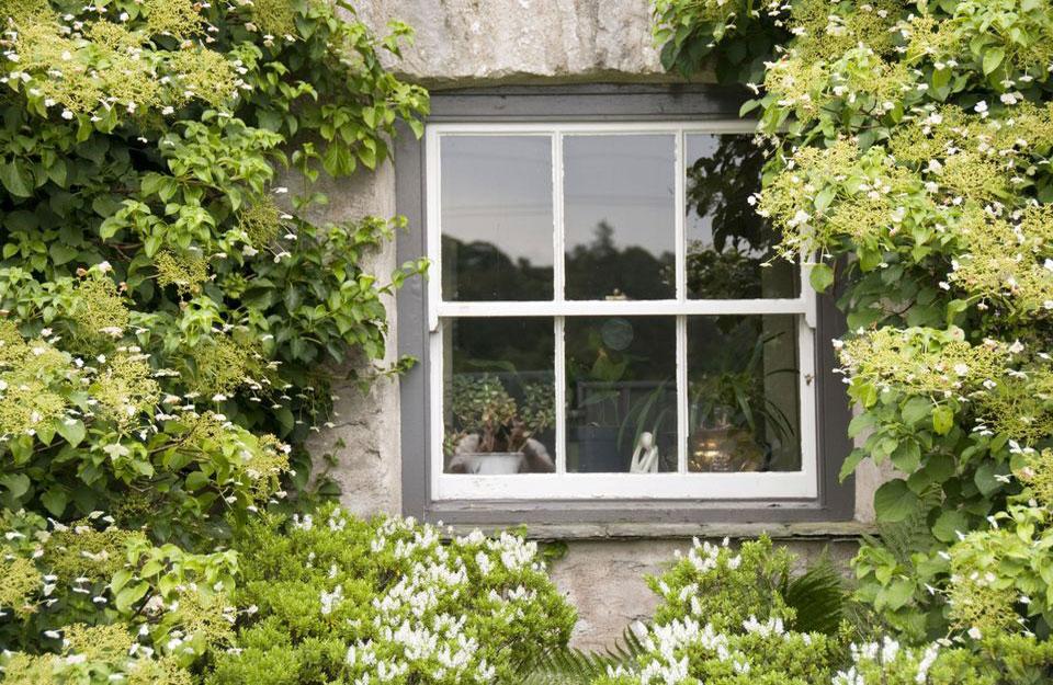 Brendiranje je bitan segment za prozore