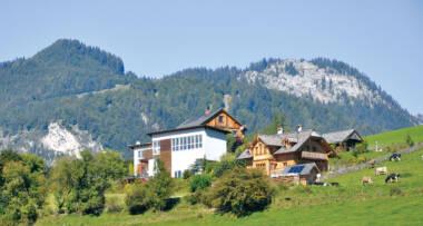Profine Group - photo: tradicijske kuće u Austriji, stolarija Trocal