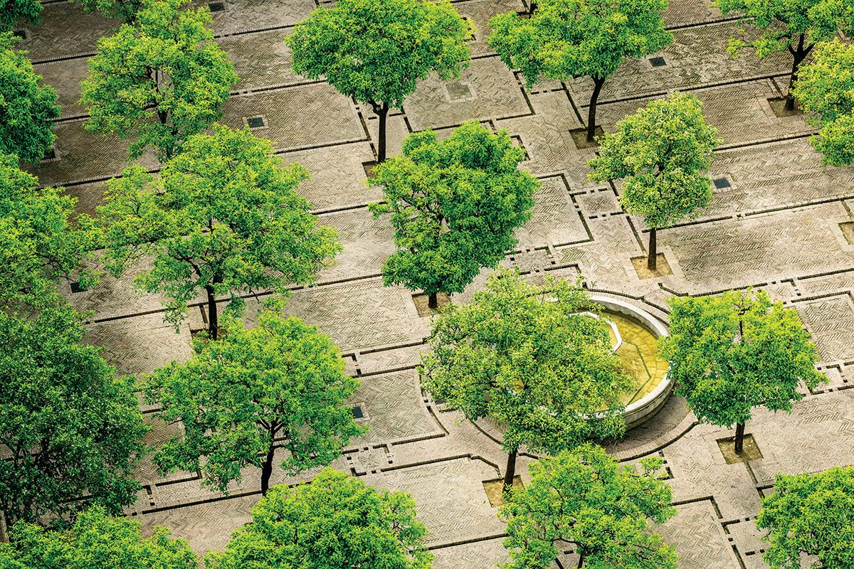 Biofilna arhitektura projekat implementacije u urbanim sredinama