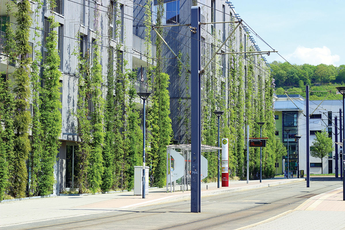 Biofilna arhitektura u gradskim sredinama