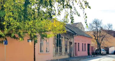 Stara stolarija drvo prozori i vrata, porodična kuća u Novom sadu