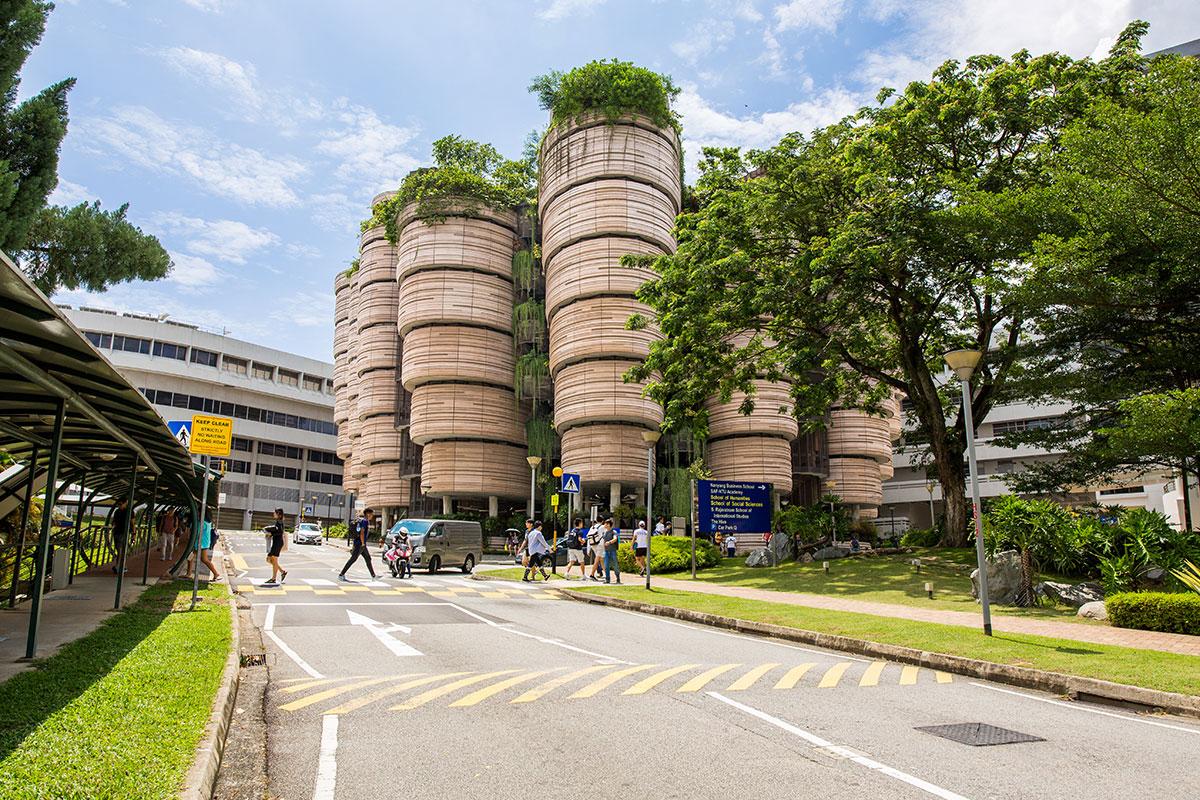 The Hibe, Singapure - Learning Hub Photo credits: Joe Almond