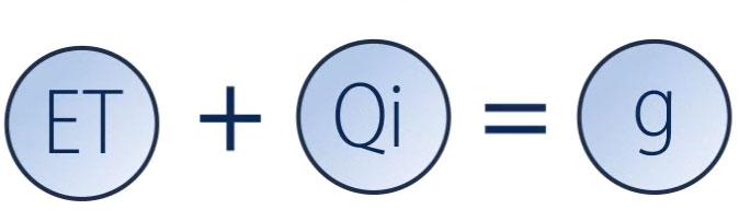Et+Qi=g